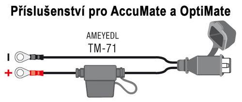 TM-71