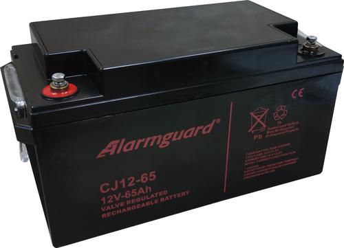 CJ12-65